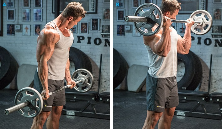 biceps1.jpg (116.76 Kb)