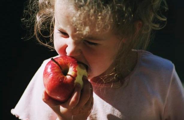 Причини їсти яблука кожен день!