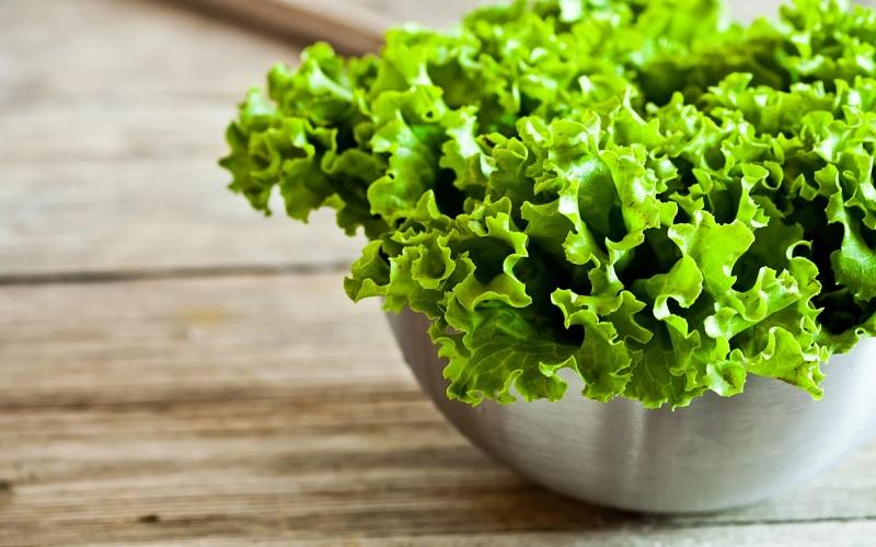 salat-1.jpg (125.55 Kb)