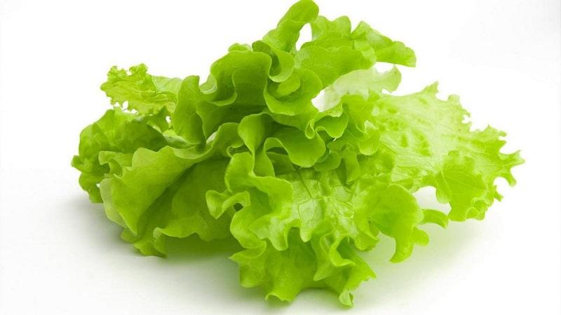 salat-2.jpg (72.27 Kb)