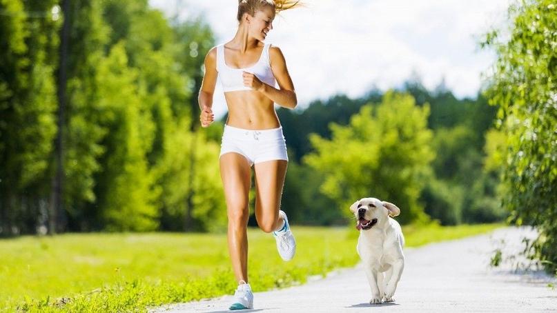 5 видів спорту для людини з собакою