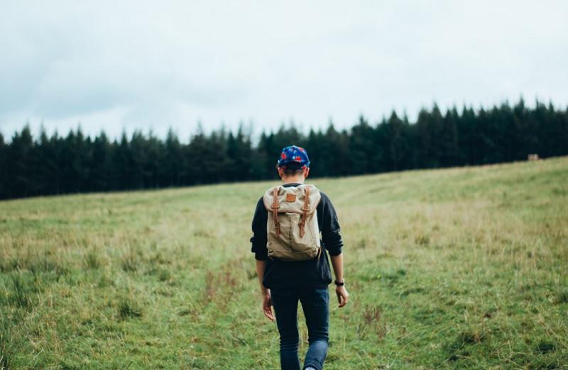 Що робити, якщо заблукав у лісі
