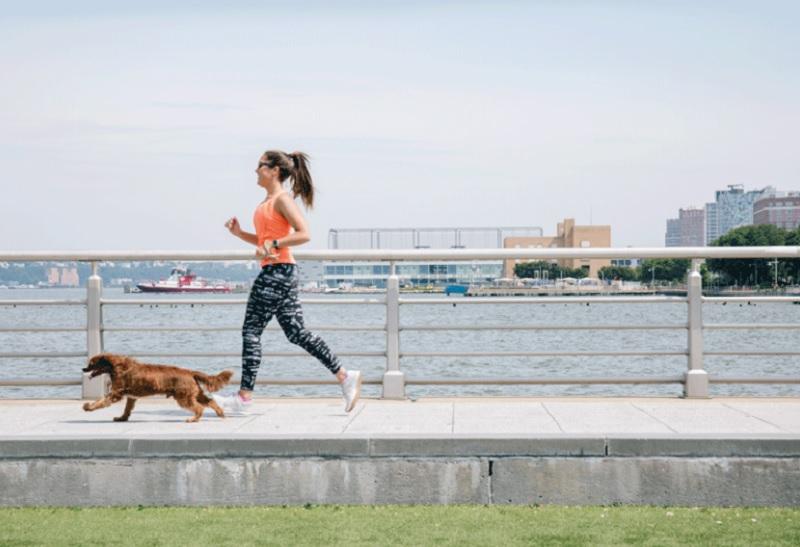 4 вправи, які перетворять прогулянку з собакою на ефективне тренування для вас